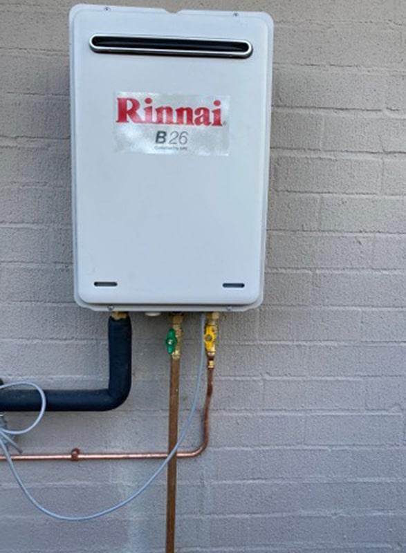 Rinnai Gas Filter